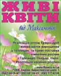 доставка цветов херсон, цветы херсон, доставка цветов в херсоне, дизайн интерьера херсон, цветы в херсоне, ландшафтный дизайн херсон, херсон доставка цветов